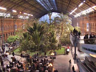The beautiful Atocha train station in Madrid, Spain is unique.