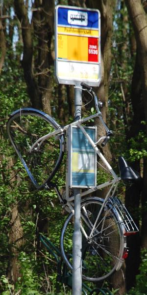 Poled Bike
